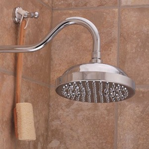 Sign Of The Crab Shower Head
